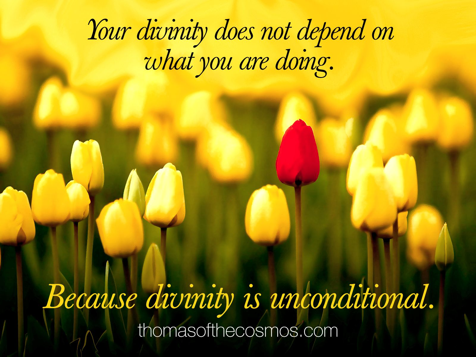 Your divinity does not depend on what you are doing. Because divinity is unconditional.