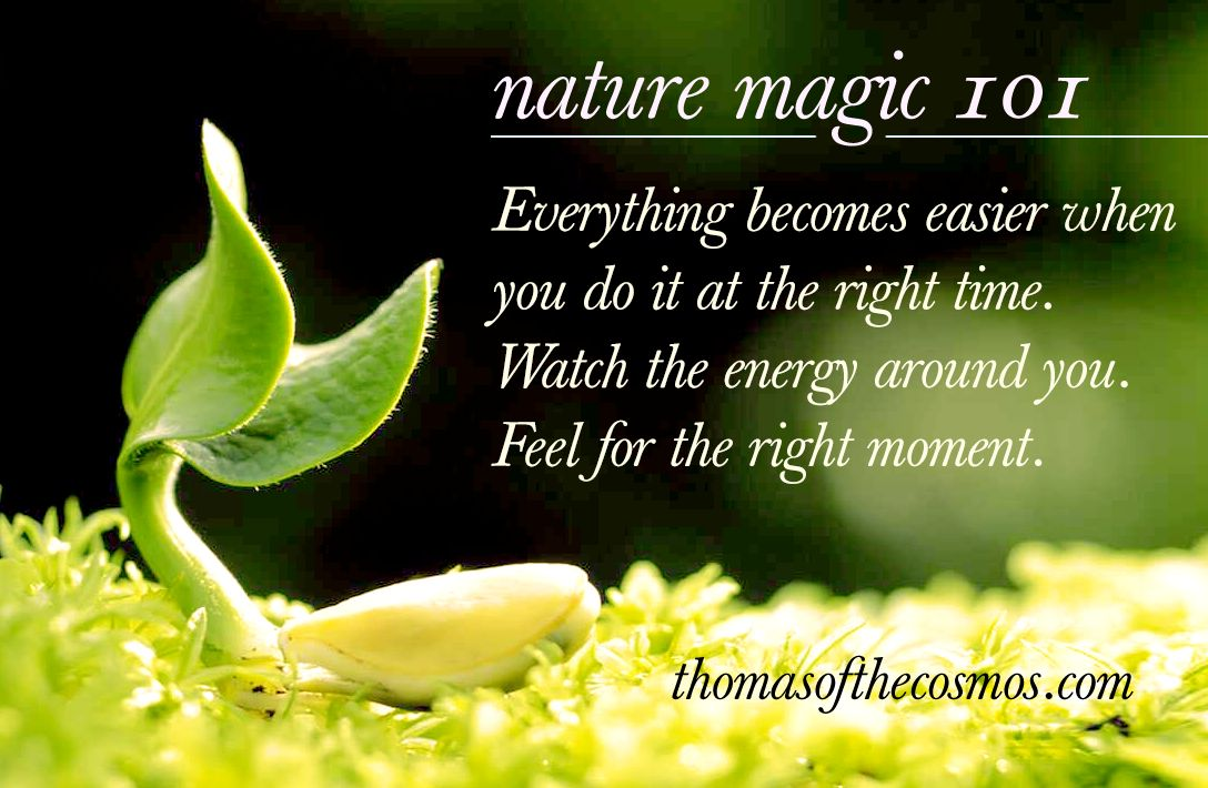 Everything becomes easier when you do it at the right time. Watch the energy around you. Feel for the right moment.